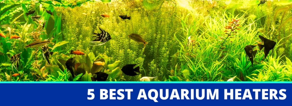 aquarium heater header