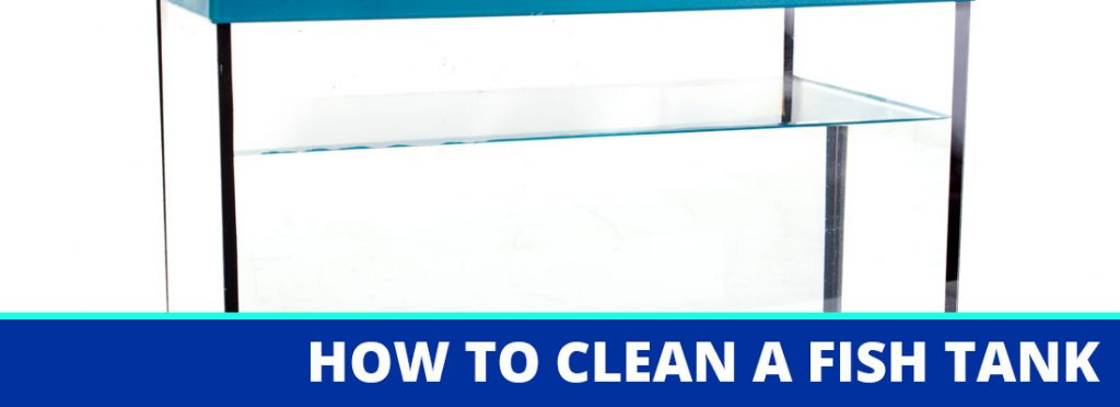 how to clean a fish tank header