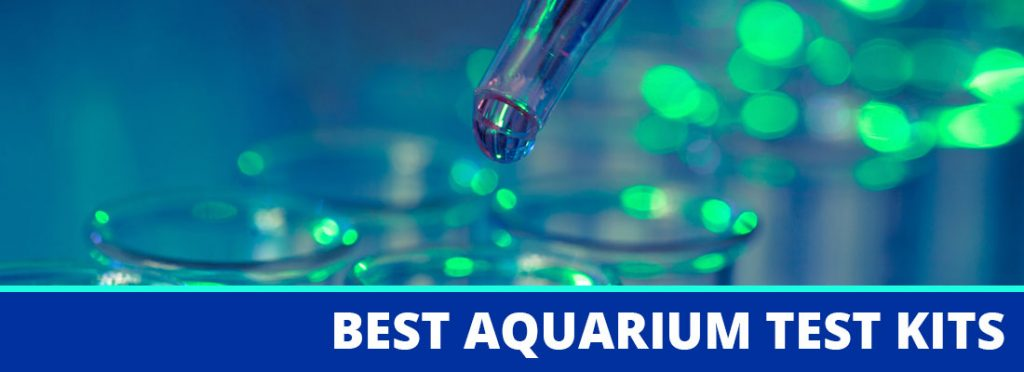 best aquarium test kits header