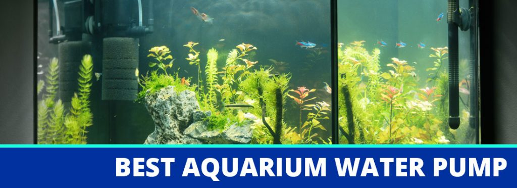 best aquarium water pump header