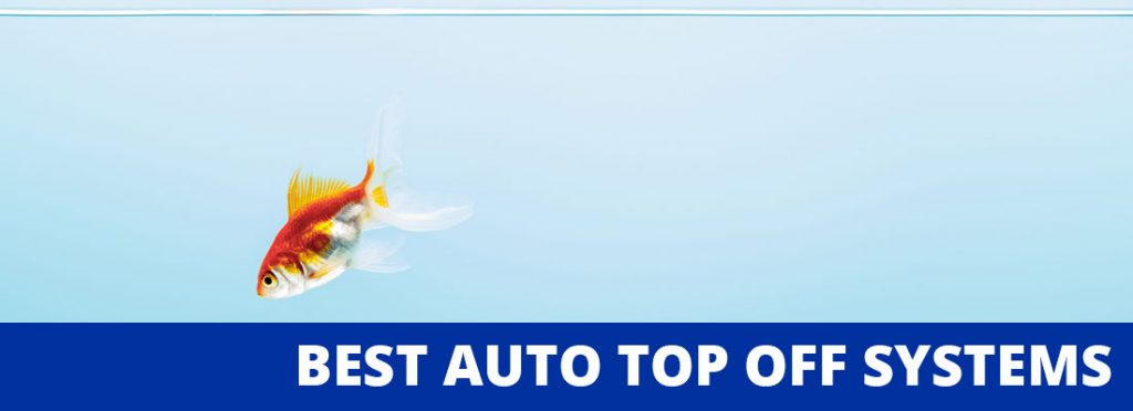 best auto top off systems header